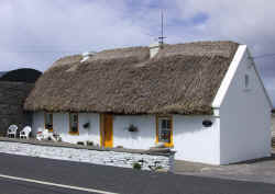 Traditional Housing